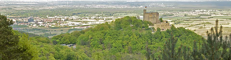 Blick aufs Hambacher Schloss vom Sommerberg / Fünf-Sinne-Pfad
